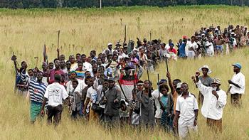 A land invasion in Manicaland